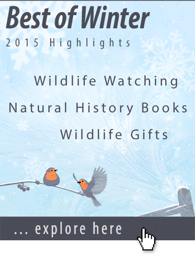 NHBS best of Winter 2015