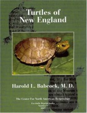 Turtles of the Northeastern United States