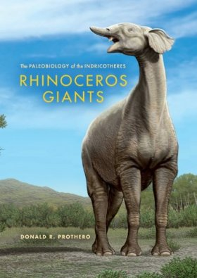 Rhinoceros Giants