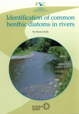 Identification of Common Benthic Diatoms in Rivers