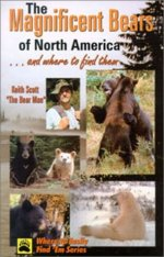 Magnificent Bears of North America