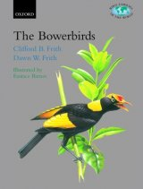 The Bowerbirds