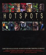 Hotspots Revisited