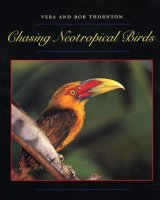 Chasing Neotropical Birds