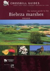 Crossbill Guide: Biebrza Marshes, Poland
