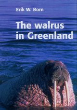 The Walrus in Greenland