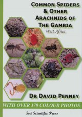 Common Spiders & Other Arachnids of the Gambia, West Africa