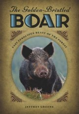 The Golden-Bristled Boar