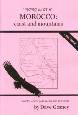 Finding Birds in Morocco: Coast and Mountains