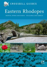 Crossbill Guide: Eastern Rhodopes - Nestos, Evros and Dadia - Bulgaria and Greece