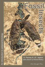 Fossil Insects