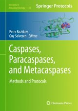 Caspases, Paracaspases, and Metacaspases