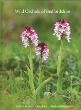 Wild Orchids of Bedfordshire