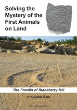 Solving the Mystery of the First Animals on Land