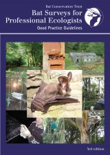 Bat Survey Guidelines for Professional Ecologists