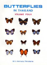 Butterflies of Thailand, Volume 4