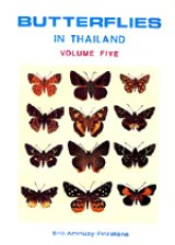 Butterflies of Thailand, Volume 5