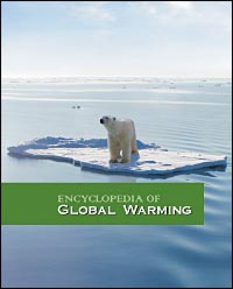 essay of global warming in hindi Essay on effects of global warming complete essay for class 10, class 12 and graduation and other classes effects of global warming the term global warming' refers to an average increase in the earth's temperature, which in turn causes changes in the climate.