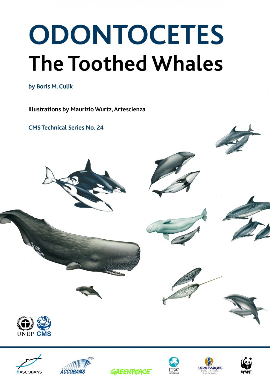 Odontocetes: The Toothed Whales - 119.8KB