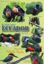 Birding Ecuador - Hummers, Howlers and Hissing Hoatzin (All Regions)