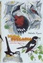 Birding Bulgaria (All Regions)