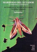 Butterflies & Moths of Ecuador (Including Galapagos) / Mariposas del Ecuador (Continental y Galápagos), Volume 17A Image