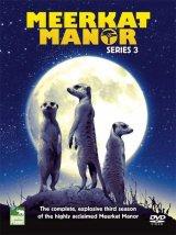 Meerkat Manor - DVD: Series 3 (Region 2) Image