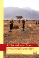 REDD+ in Dryland Forests Image