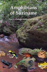 Amphibians of Suriname Image