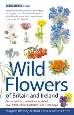 Wild Flowers of Britain and Ireland Image