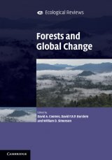 Forests and Global Change Image
