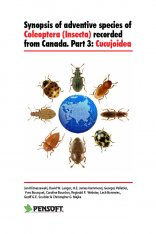 Synopsis of Adventive Species of Coleoptera (Insecta) Recorded from Canada, Part 3: Cucujoidea Image