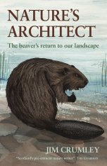 Nature's Architect: The Beaver's Return to Our Wild Landscapes
