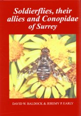 Soldierflies, their Allies and Conopidae of Surrey Image